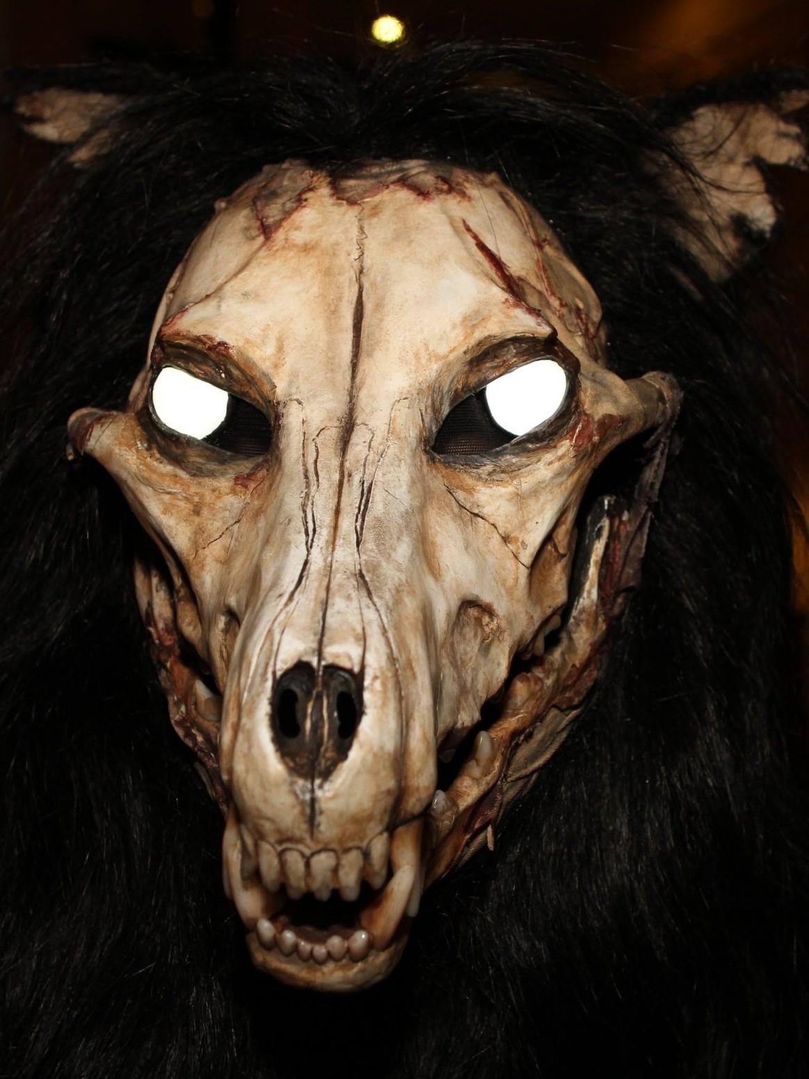 Zombie Dog Halloween Costume